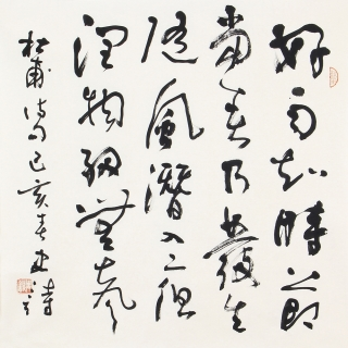 古诗词 史诗四尺斗方书法作品草书《春夜喜雨》