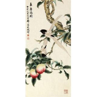 名人字画 田世光三尺竖幅工笔花鸟画《长寿逊龄》